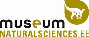 Museum RBINS.jpg